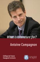 La littérature, pour quoi faire?