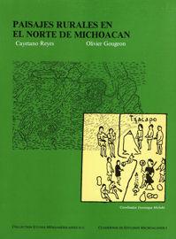 El noroeste de Michoacan: un paisaje en busca de identidad