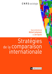 Stratégies de la comparaison internationale