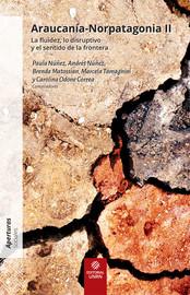 Capítulo 13. Pitrén, origen y transformación de una categoría arqueológica