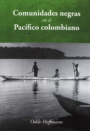 Capítulo 8. Los territorios colectivos, la transición institucional