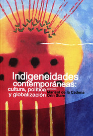 Capítulo 1. Identidades indígenas, nuevas y antiguas voces indígenas