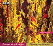 Quinoa et quinueros