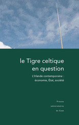 Le Tigre celtique en question