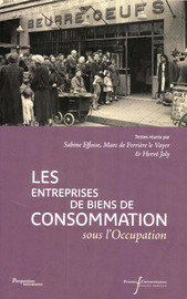 Conclusions : contraintes, opportunités et adaptations