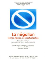 Négation et (re)construction identitaire positive : quelques paradoxes rushdiens