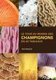 Le tour du monde des champignons en 60 tableaux