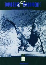 Le leurre commémoratif des Stèles de Victor Ségalen