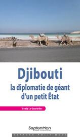 Djibouti : la diplomatie de géant d'un petit État