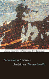 IX. Transculturality and the Colonial Legacy of Popular Belief in North-East Argentina